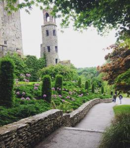 Blarney Castle 4