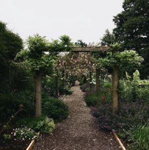 Blarney Castle Gardens 3