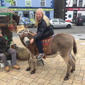 Donkey in Dingle